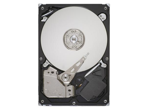 Lenovo - Festplatte - 1 TB - intern - 8.9 cm (3.5