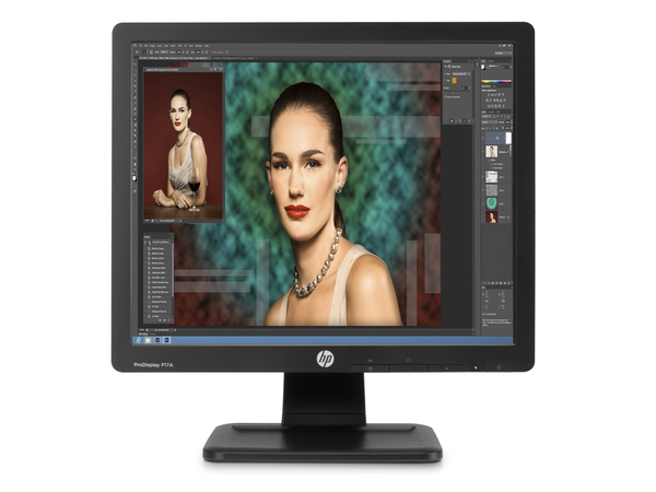 HP ProDisplay P17A - LED-Monitor - 43.2 cm (17