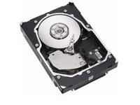 Lenovo Enterprise - Festplatte - 1 TB - intern - 8.9 cm (3.5