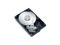 Festplatte / ThinkServer 2.5