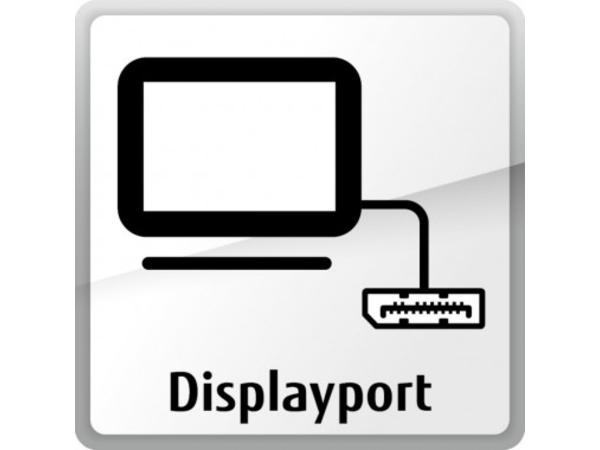 FUJITSU DisplayPort extension card