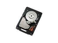 Lenovo Gen2 512e - Festplatte - 6 TB - Hot-Swap - 3.5