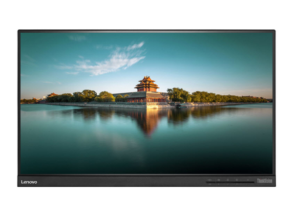 Lenovo ThinkVision T2364t - LED-Monitor - 58.4 cm (23