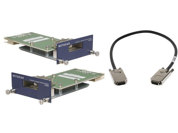 NETGEAR ProSafe AX742 - Erweiterungsmodul (Packung mit 2) - für ProSAFE GSM7328S, GSM7352S
