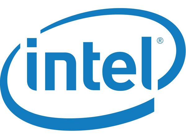 Intel Hot-Swap Drive Cage - Kit - Gehäuse für Speicherlaufwerke - 3.5